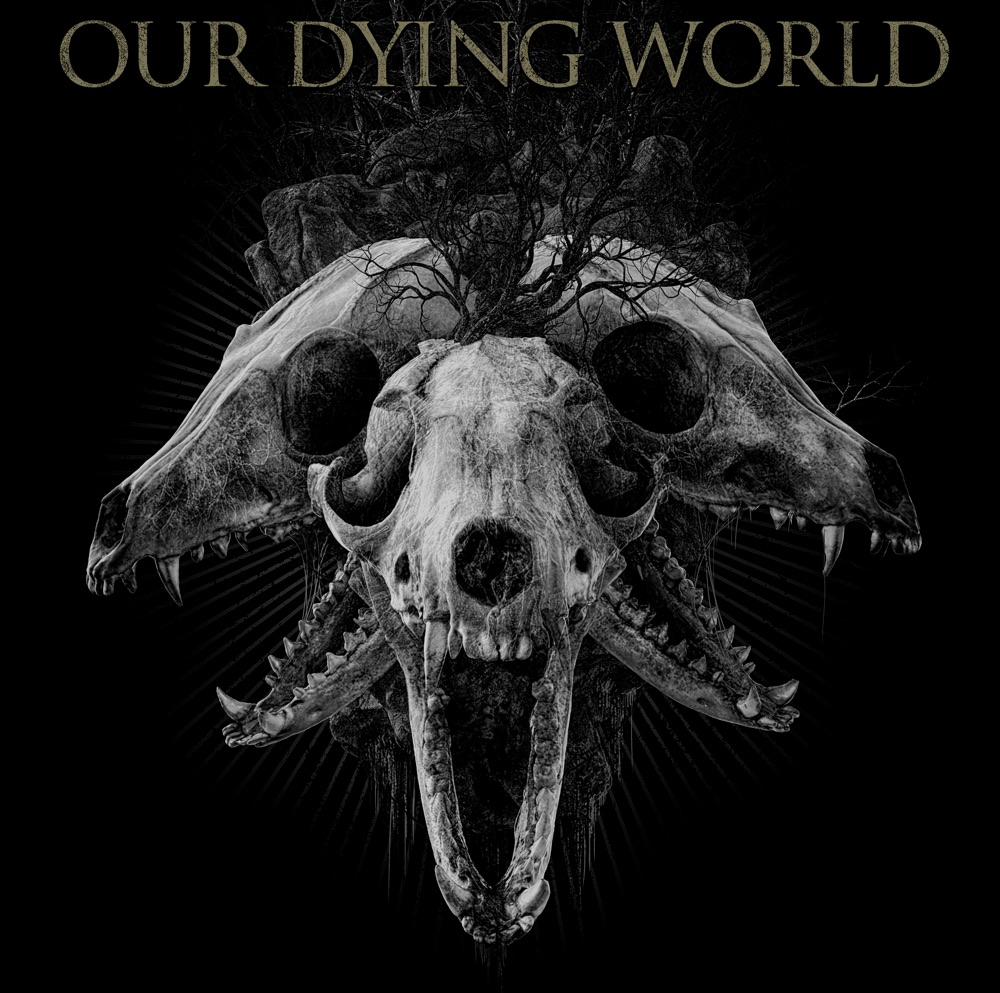 Our Dying World New Single Release!